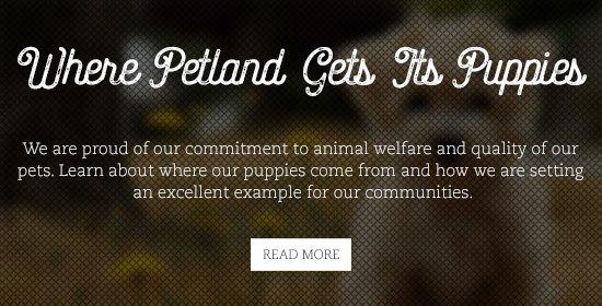 petland-gets