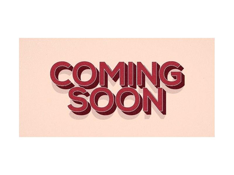 Samoyed-Female-White-2720218-Petland Dallas, TX